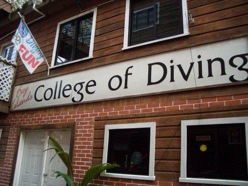 bay islands college of diving.jpg