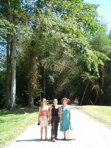 lancetilla botanical gardens.jpg