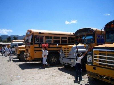 school%20buses.jpg